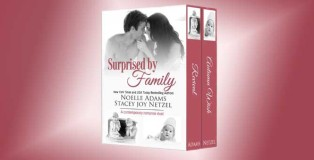"contemporary romance boxed set ""Surprised by Family"" by Noelle Adams & Stacey Joy Netzel"