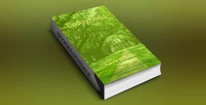 """ya historical fiction for kindle """"Underground"""" by Gayle O'Brien"""
