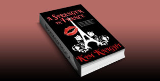 "contemporary romantic suspense ebook ""A Stranger in France