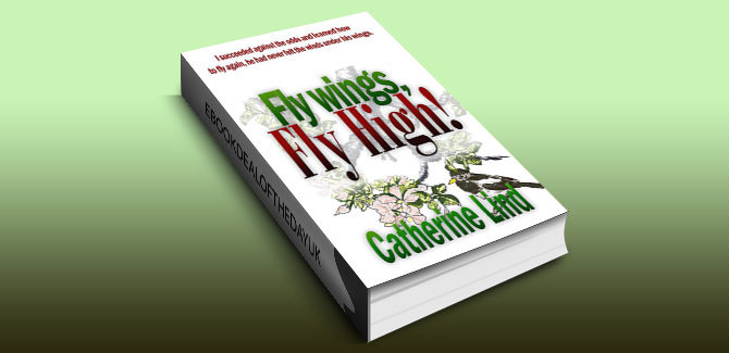 biographical fiction ebook Fly wings, Fly High! by Catherine Lind