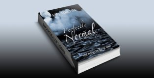 Perfectly Normal (The Perfects Book 1) by Amy Martin