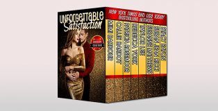 Unforgettable Satisfaction by Mimi Barbour + more!